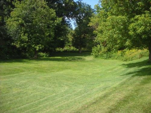 golf course augchipper 010